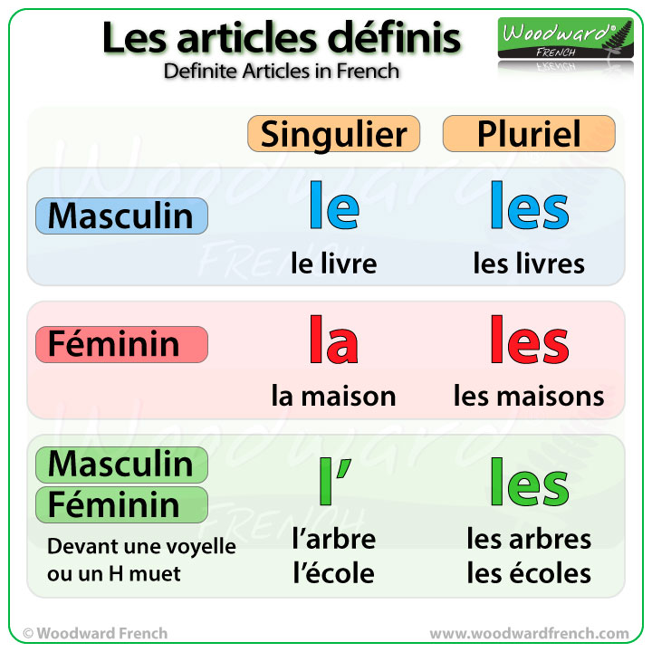 French articles and determiners - Wikipedia